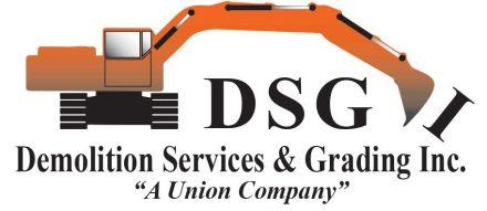 DSGI - Sponsor Logo